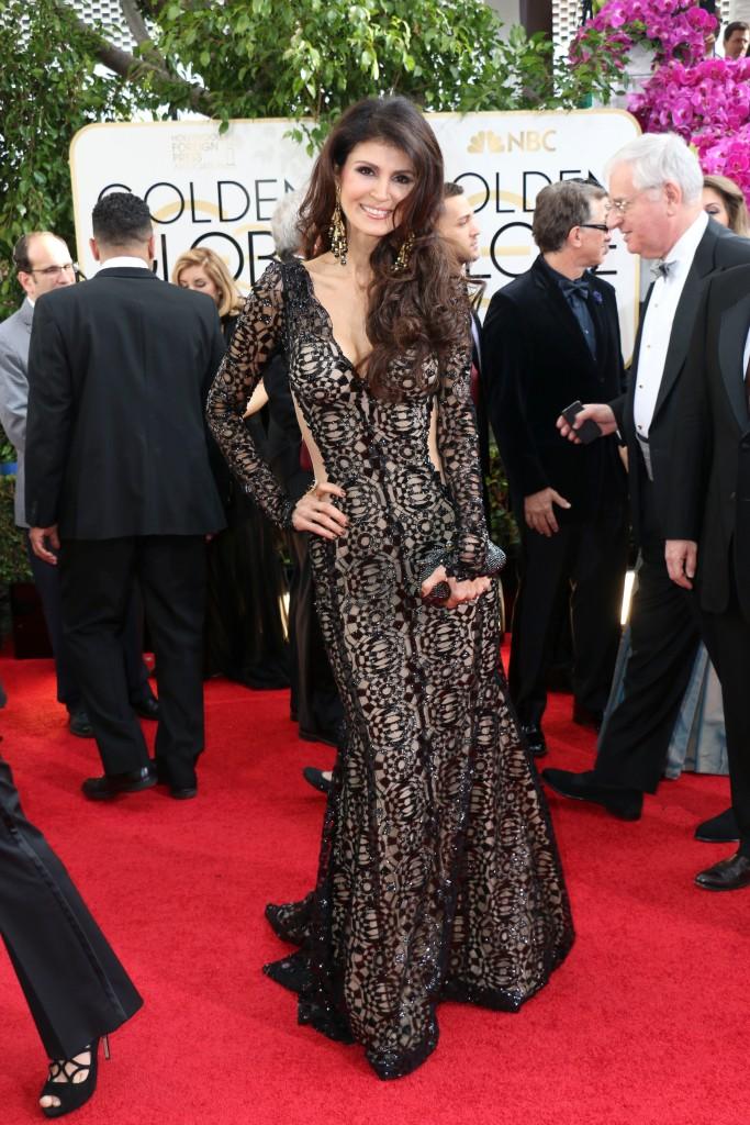The 2014 Golden Globes Awards